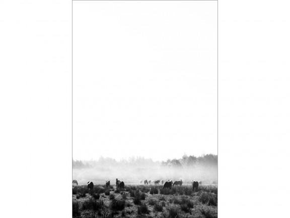 SPOKÓJ fotografia czarno-biała 50x70cm