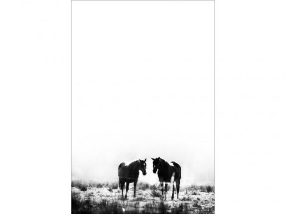 MIŁOŚĆ fotografia czarno-biała 50x70cm